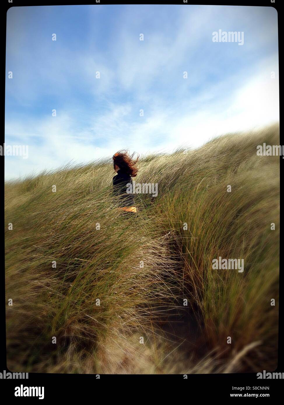 A young girl standing in tall grass in the wind. - Stock Image