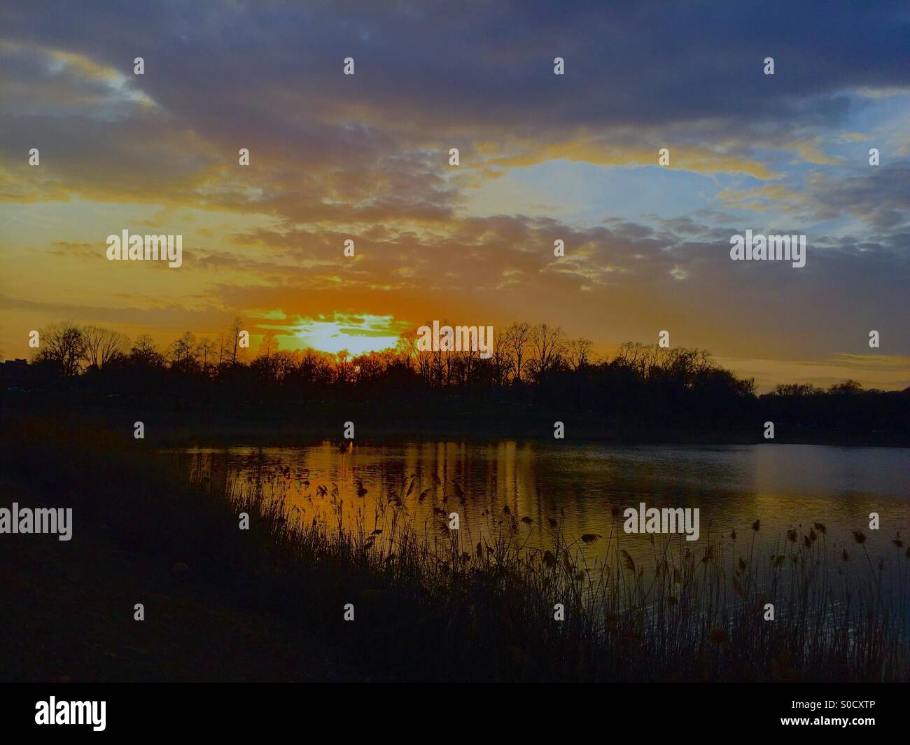 Sunset at Druid hill park - Stock Image