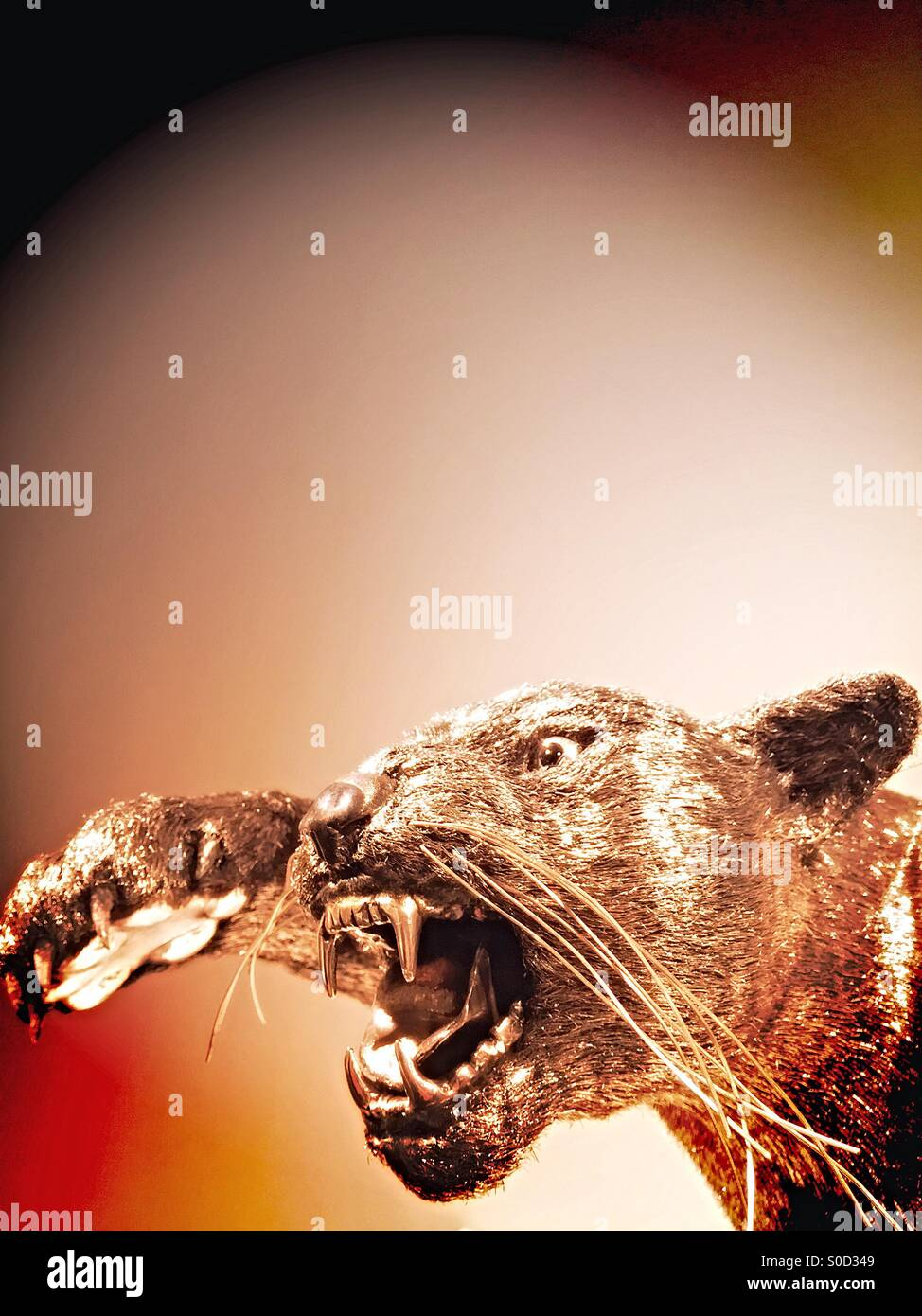 Puma Sculpture - Stock Image