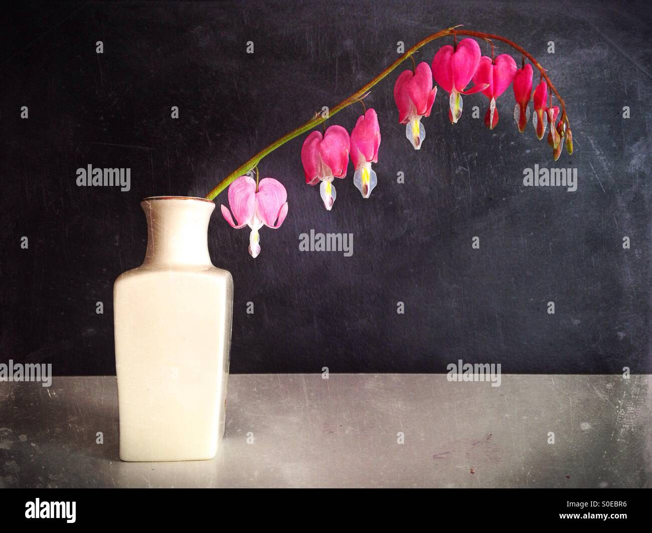 A vase with a sprig of bleeding hearts flowers. - Stock Image