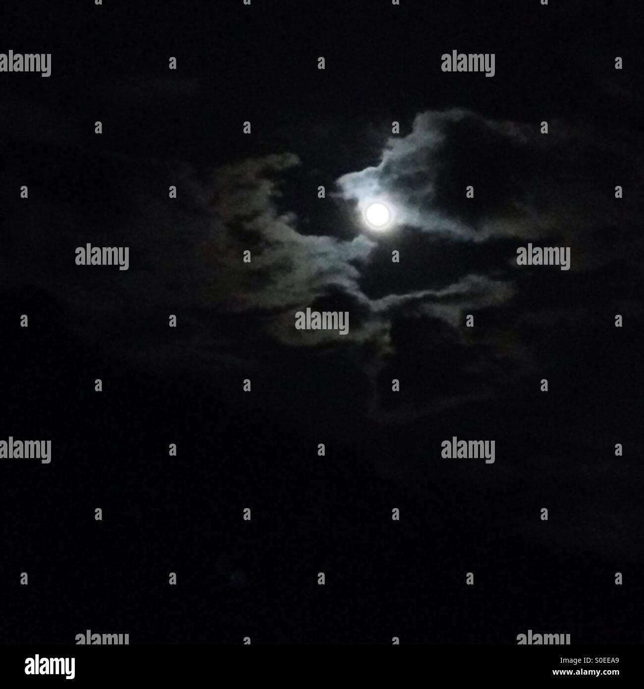 Moonlight - Stock Image