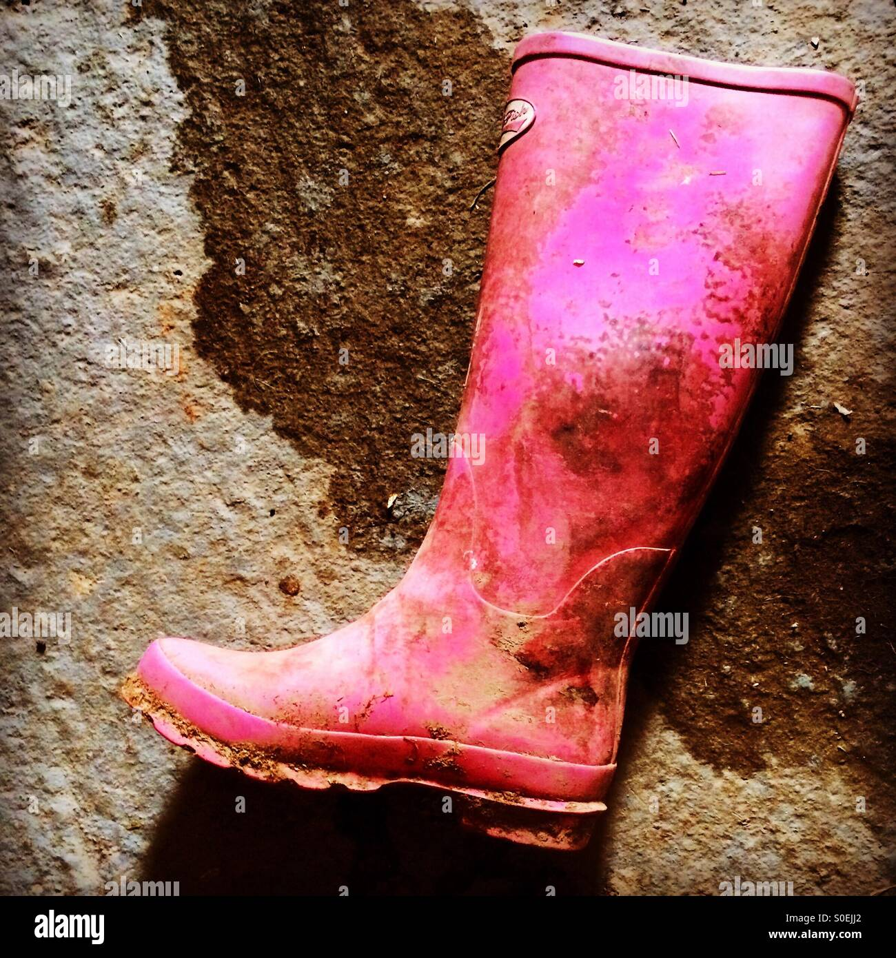 A dirty pink Wellington boot - Stock Image