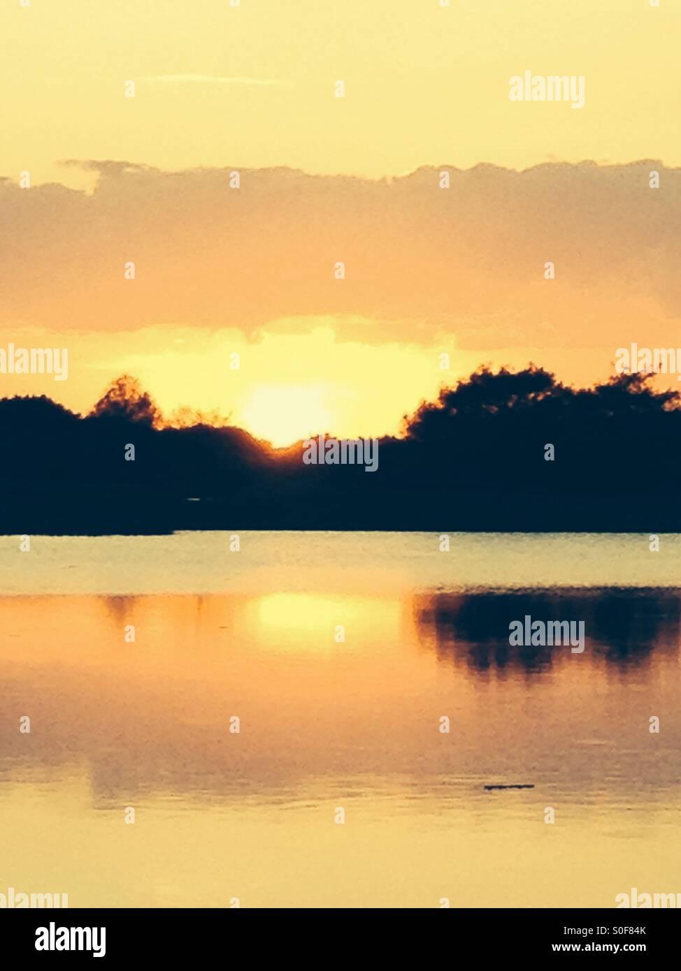Bright yellow sunset over the florida Everglades Stock Photo