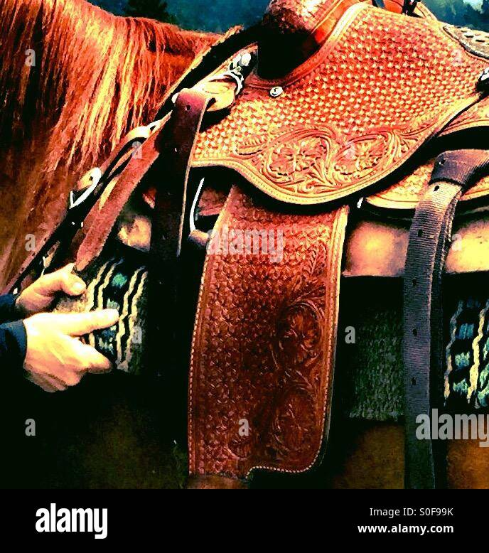 Securing saddle on beautiful long maned light chestnut sorrel horse. - Stock Image