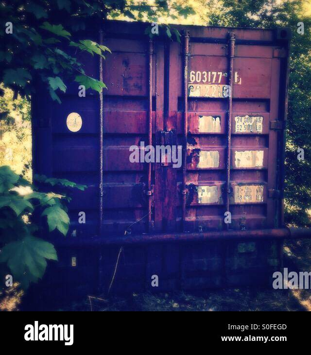 Old Shipping Container in amongst the trees - Stock Image