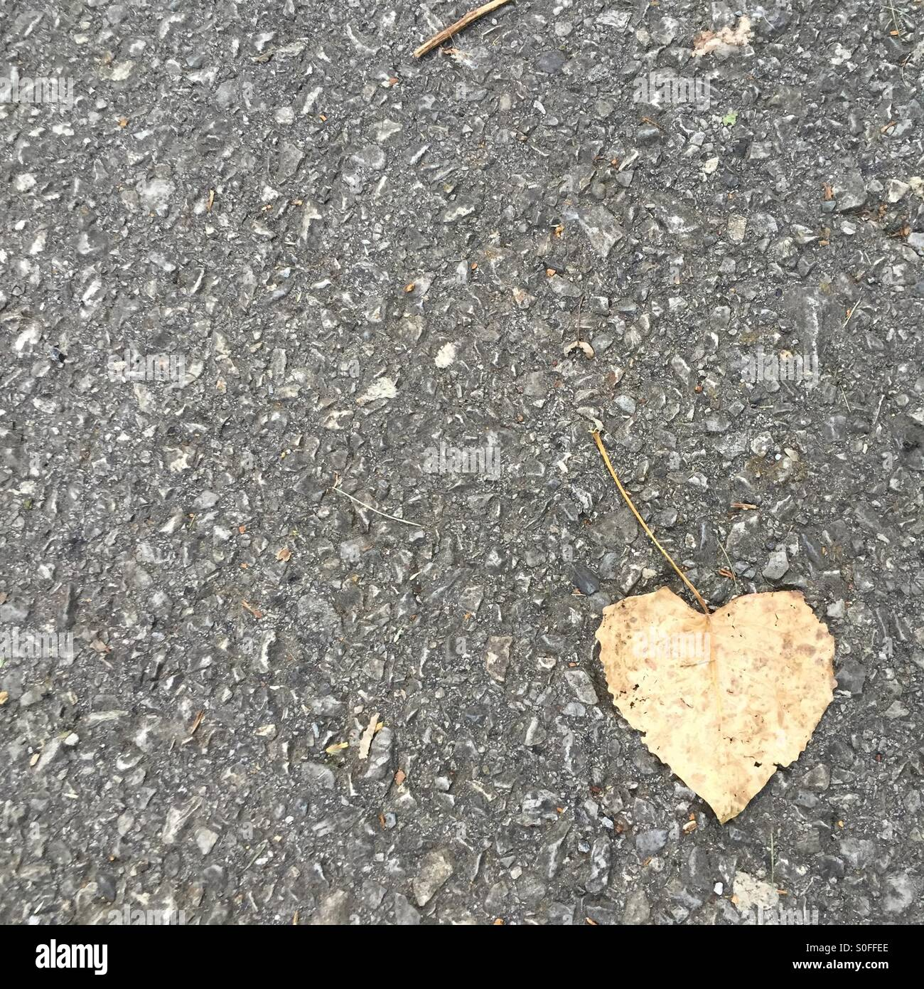Love in the pavement Stock Photo