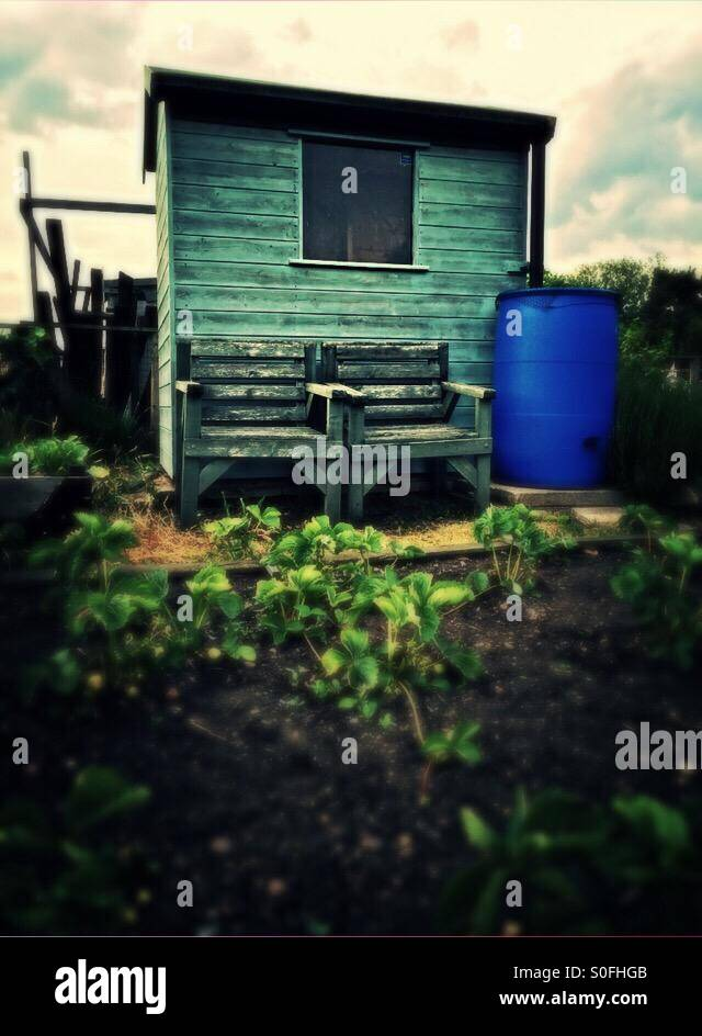 Seats by the allotment shed - Stock Image