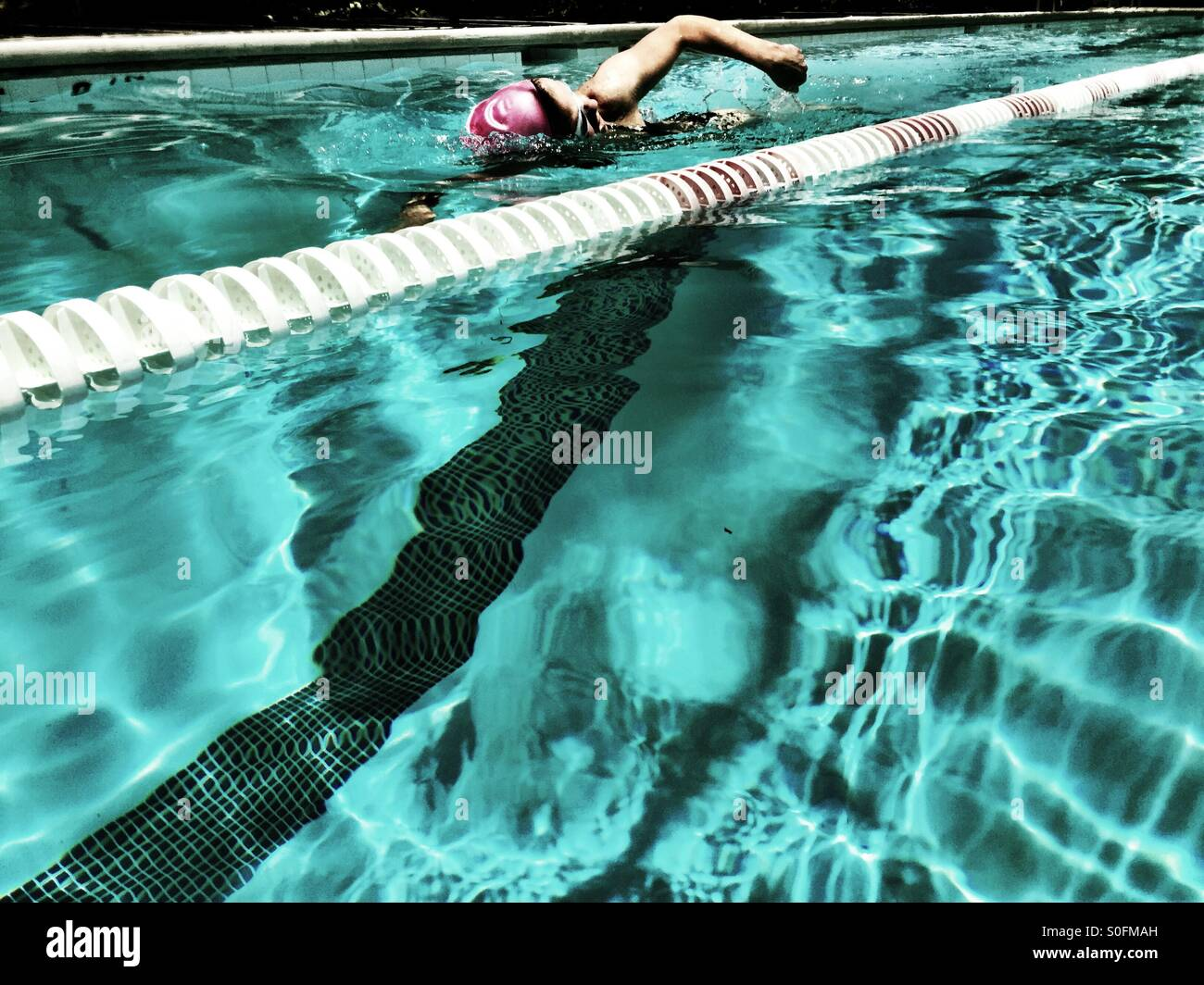 View from adjacent lane, young woman swimming freestyle (Australian) crawl in outdoor Olympic size 25 meter pool. - Stock Image
