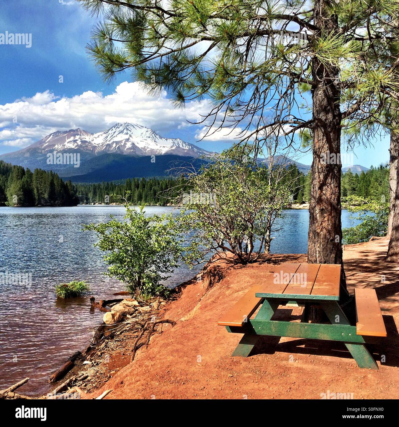 A picnic with Mount Shasta - Stock Image