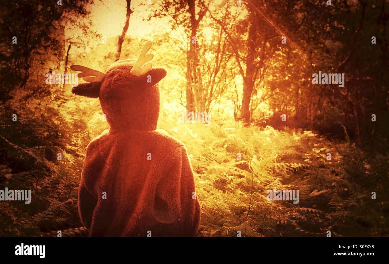 """A child in a onesie exploring an enchanted forest - """"where the wild things are"""" Stock Photo"""