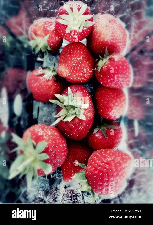 Strawberries in a plastic carton - Stock Image