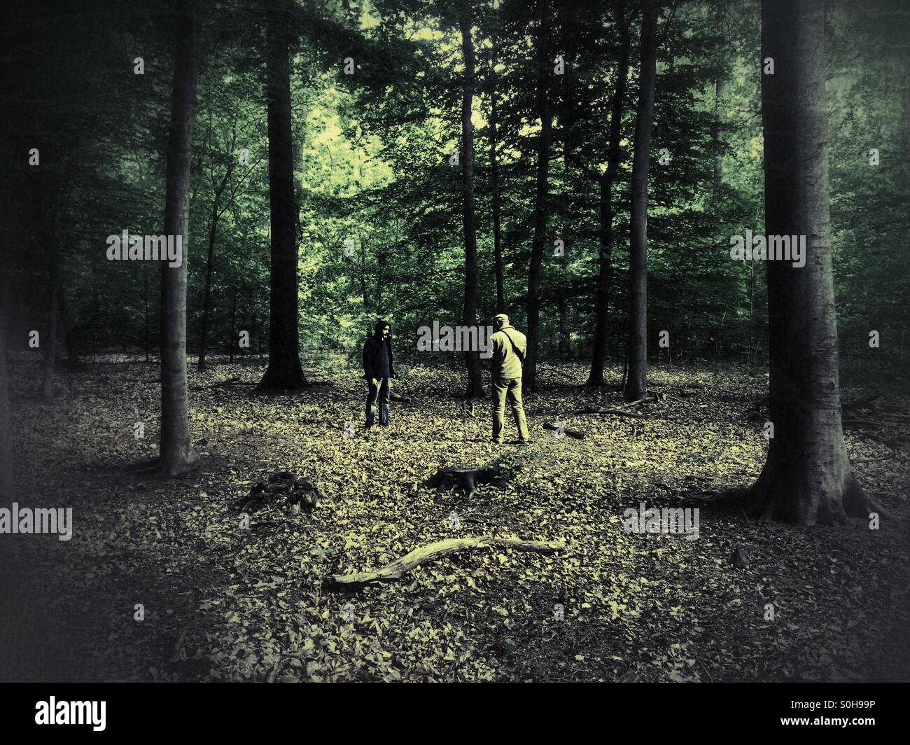 Photographer shooting man model in Forest - Stock Image