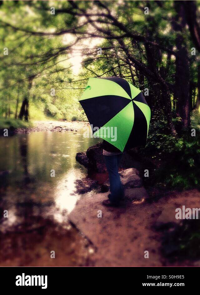 Black and green brolly on a rainy day down by the stream in the forest - Stock Image