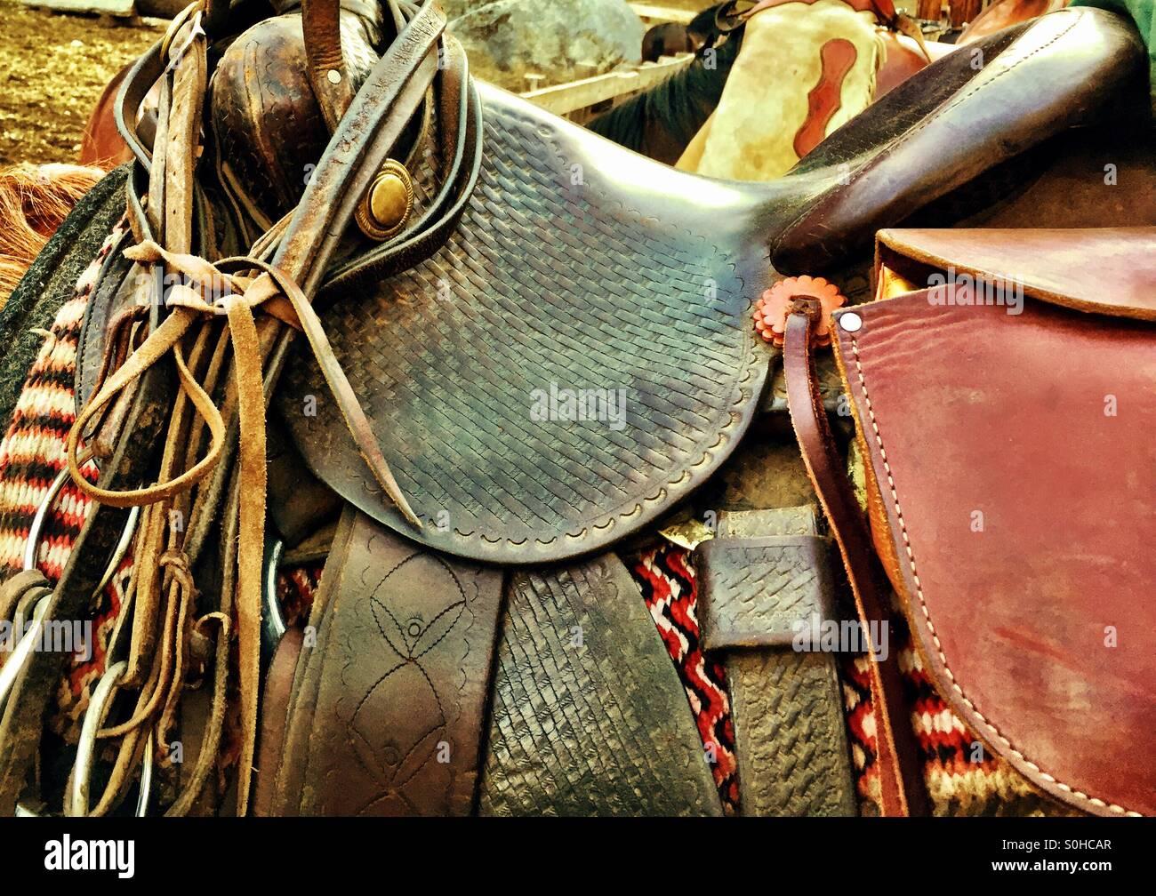 American Western horse saddle, bridle, tacking. - Stock Image