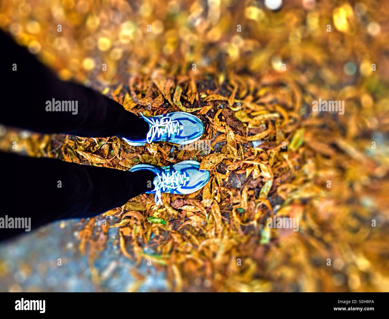 Exercise - Stock Image
