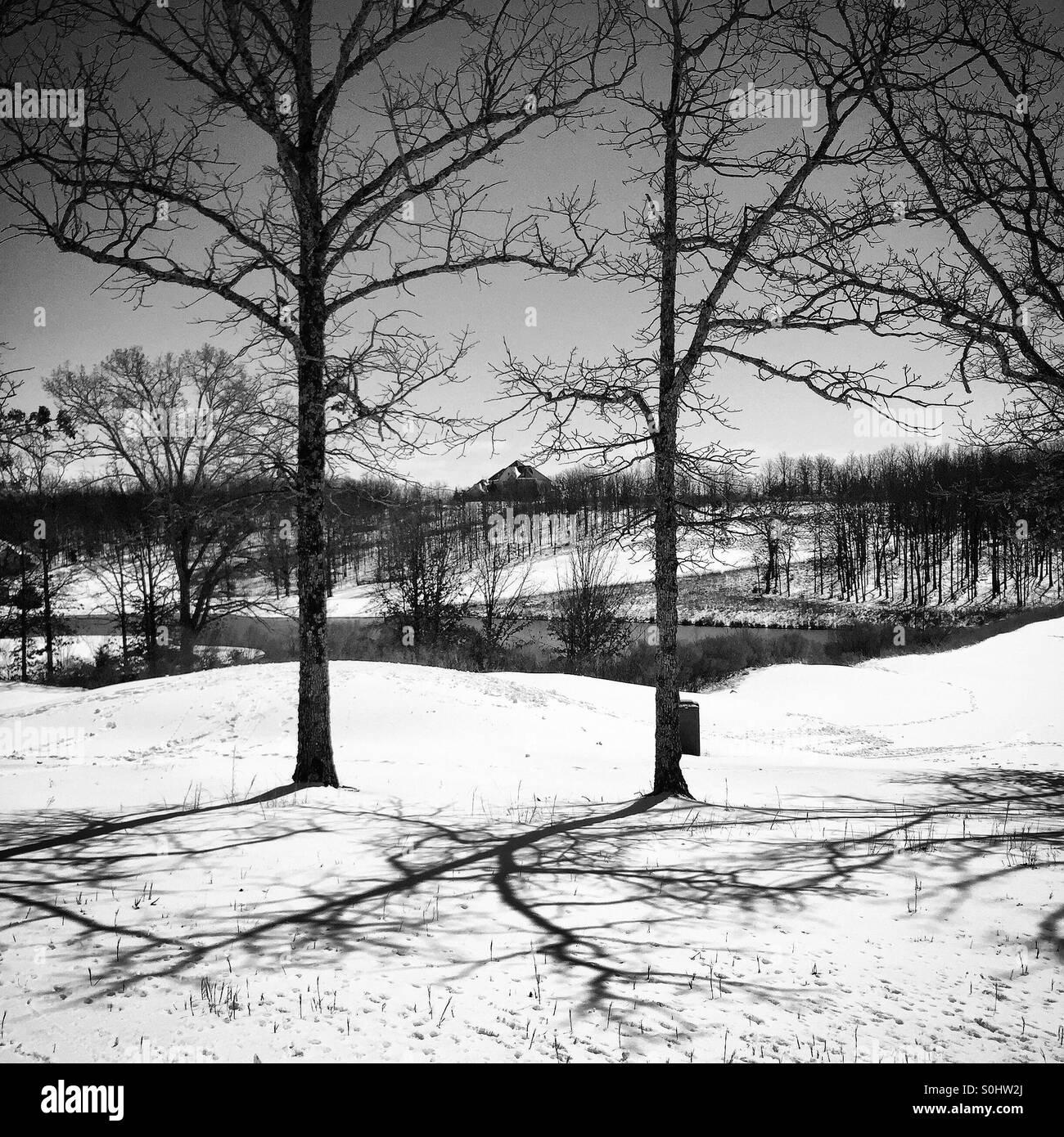 Gorgeous snow fall - Stock Image