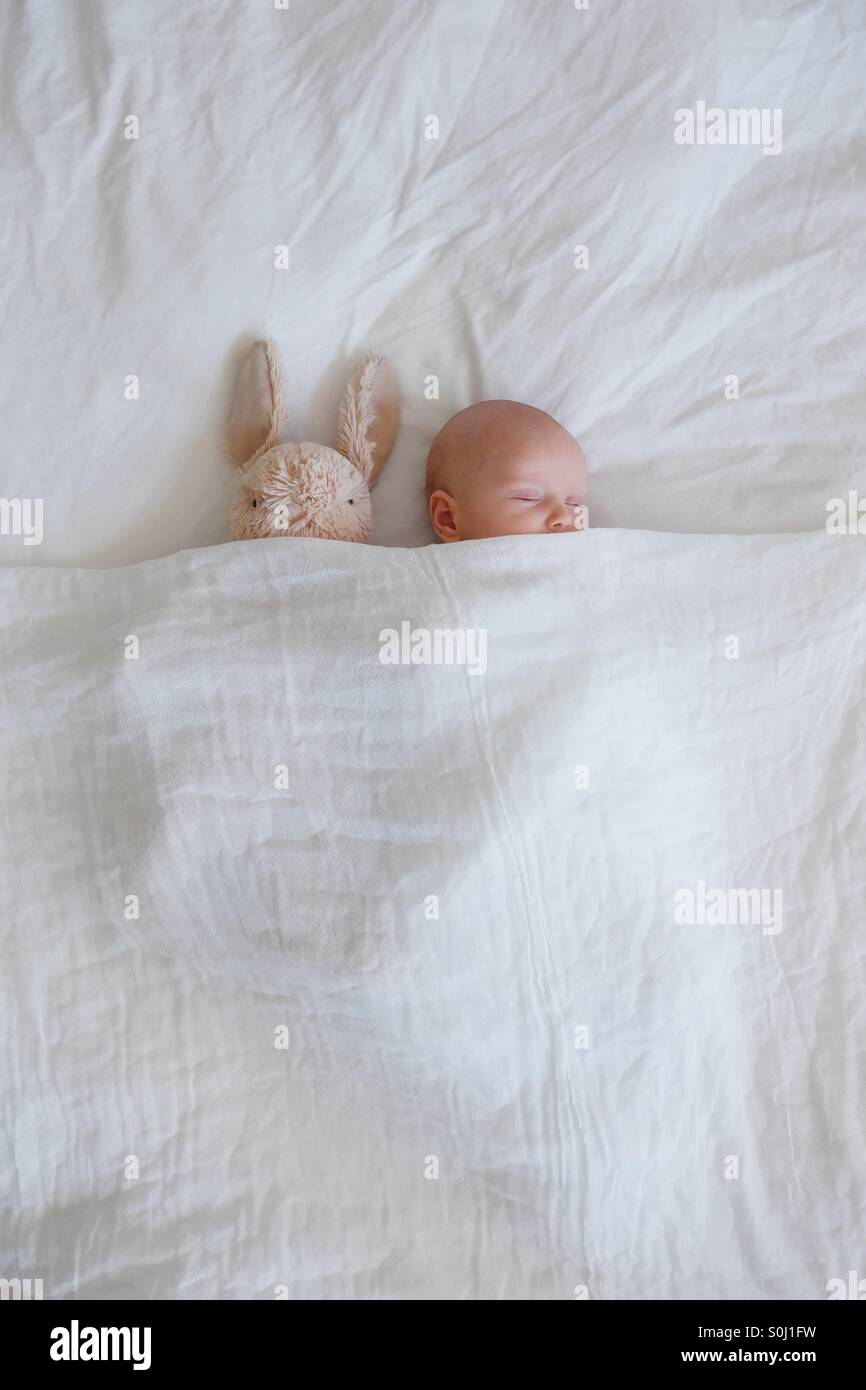 Sleeping baby and bunny - Stock Image