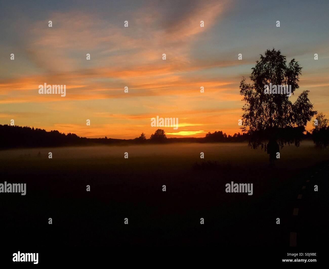 Sunset with fog - Stock Image