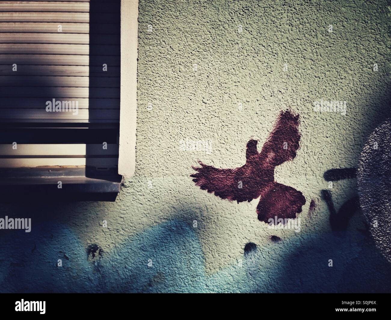 Pigeon Graffiti in Berlin neukoelln - Stock Image