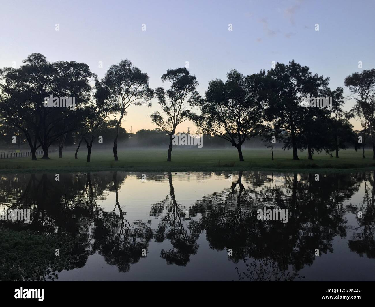 Sydney park water reflections - Stock Image