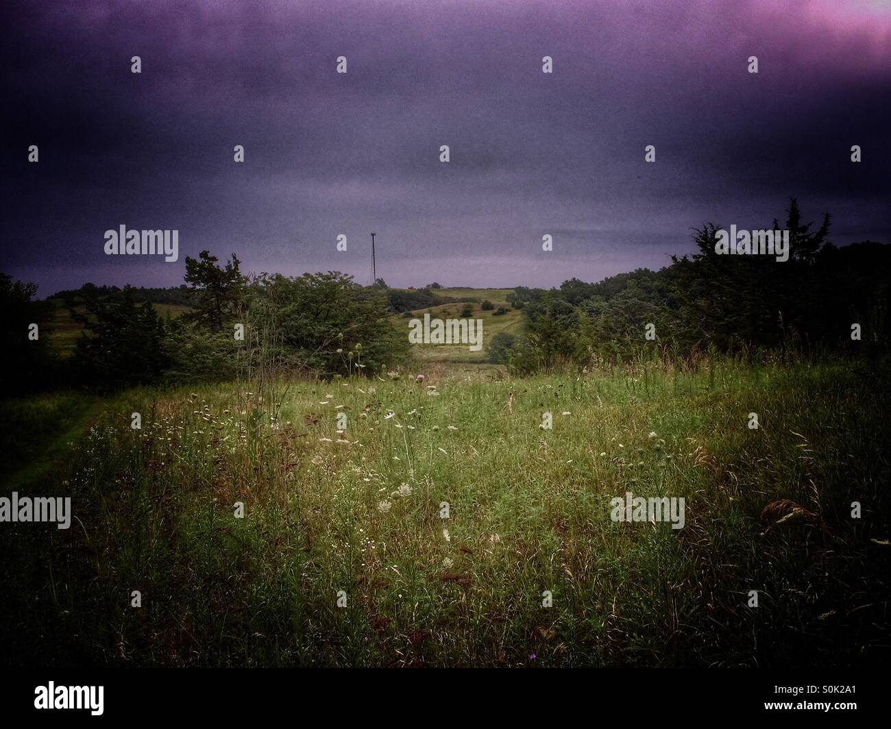 Landscape of Meadow before a storm - Stock Image