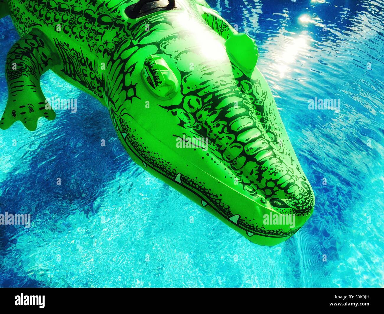 Green Inflatable Alligator Toy Floating On Blue Water.