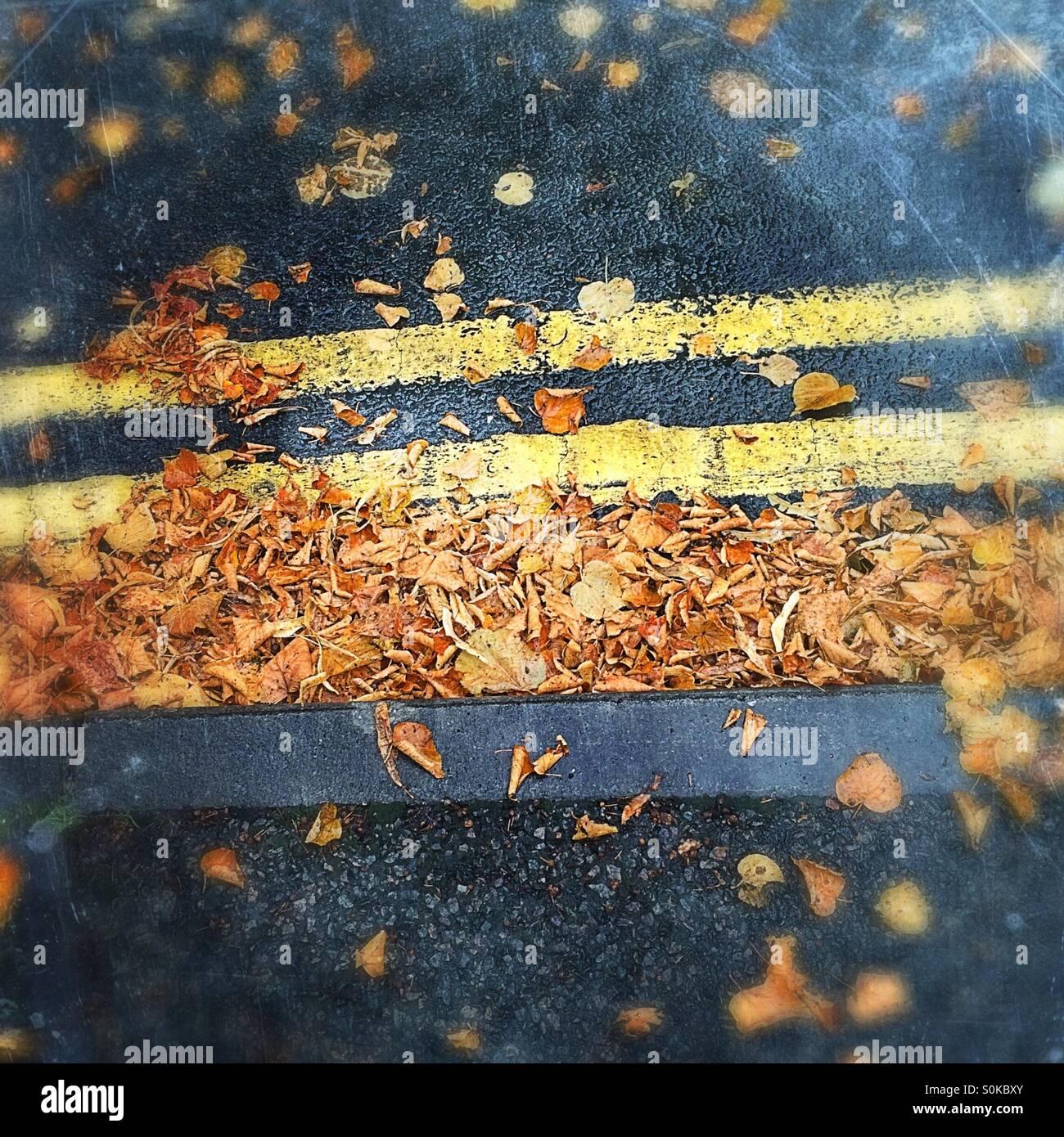 Autumn Highway - Stock Image