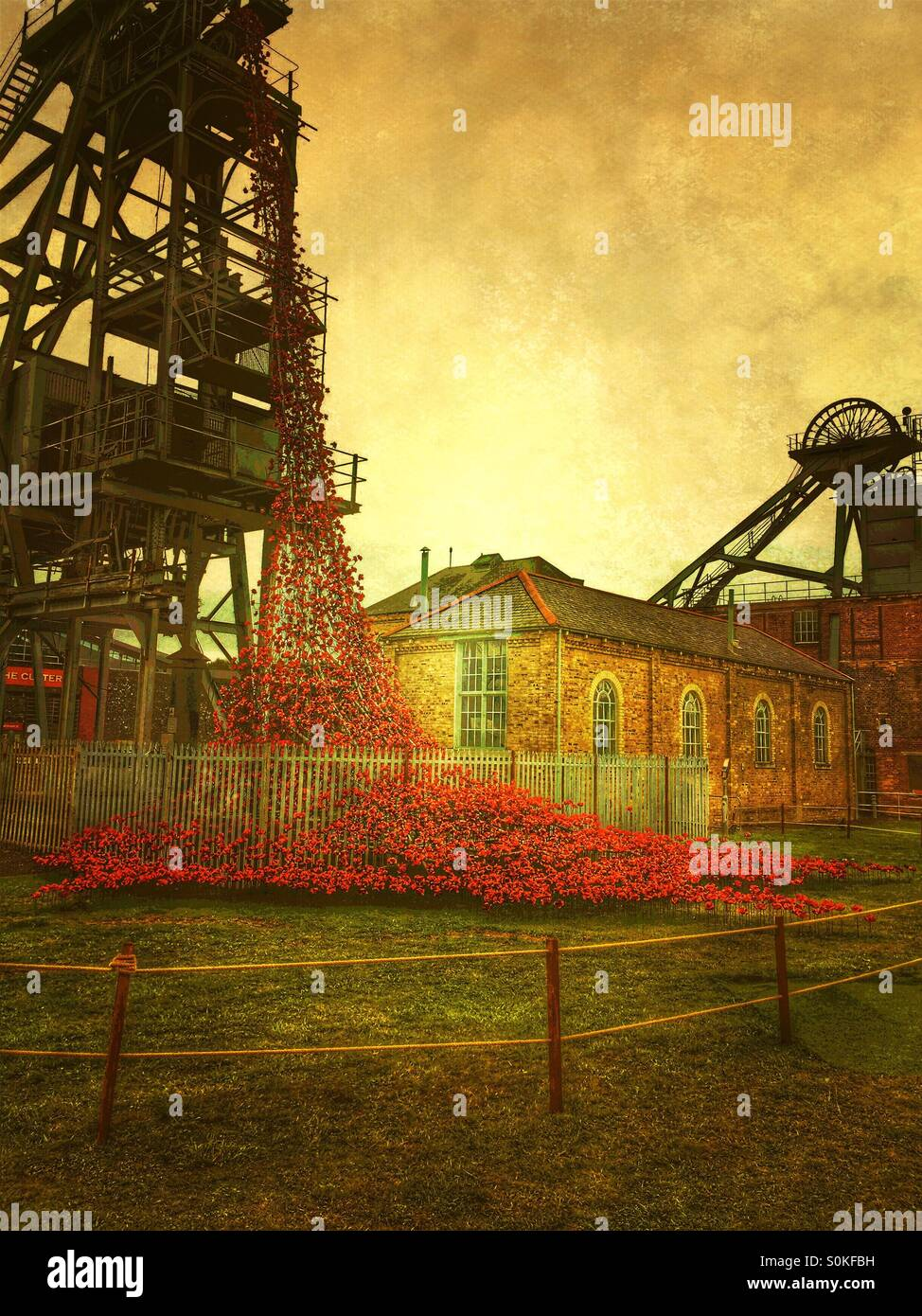 Weeping window poppy display, at Woodhorn Colliery in Ashington in Northumberland, to commemorate the soldiers of - Stock Image