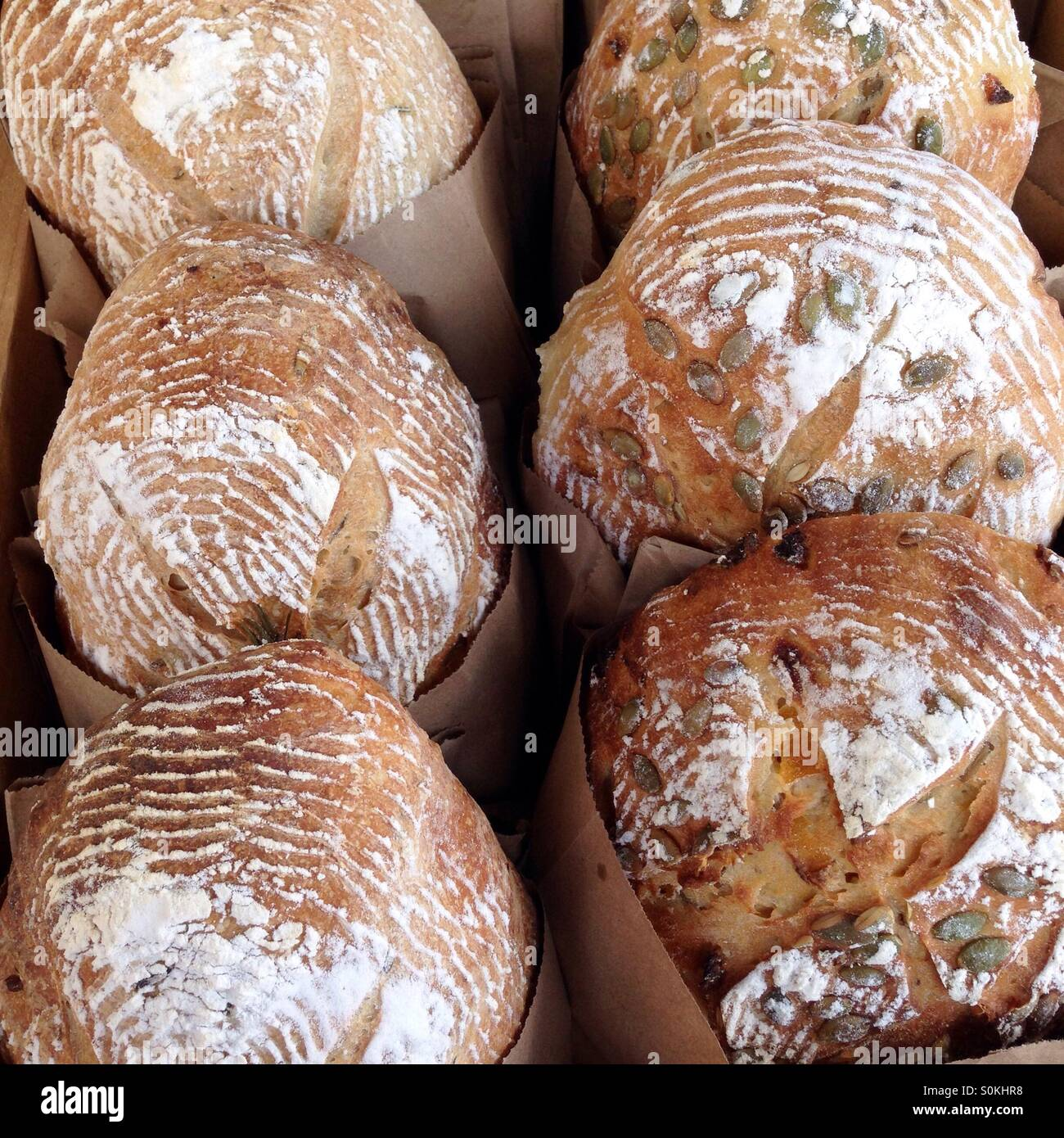 Freshly baked artisan breads with seeds and without - Stock Image