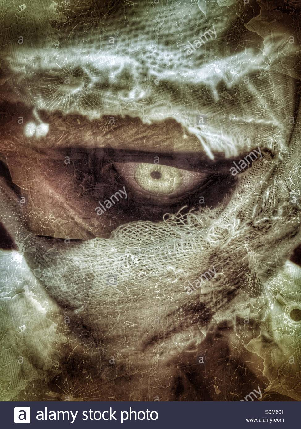Mummy - Stock Image