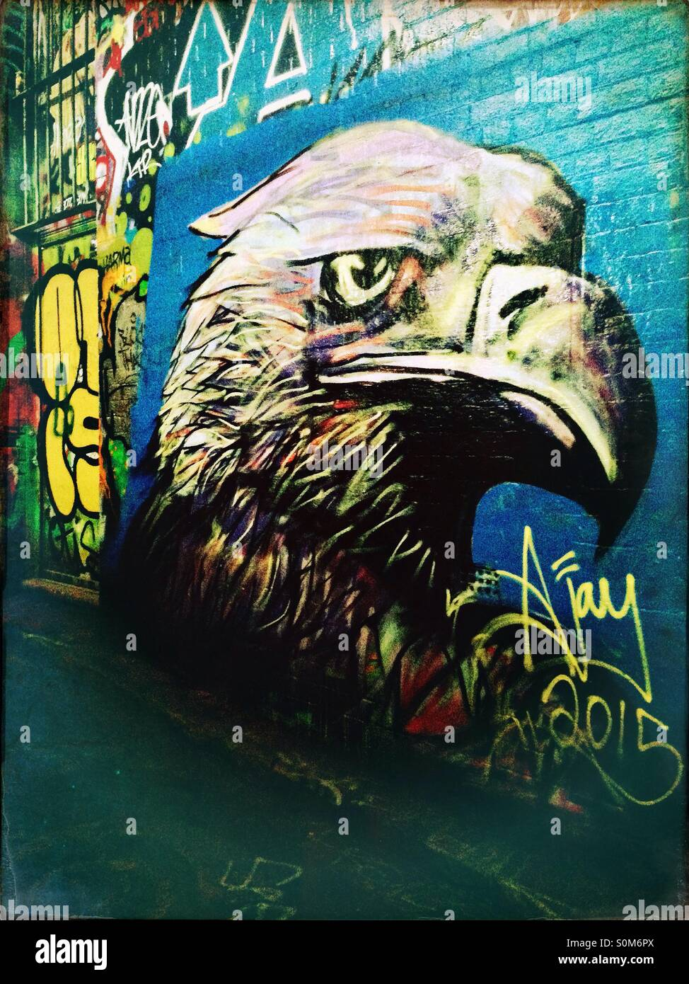 Street art of an eagle head Stock Photo