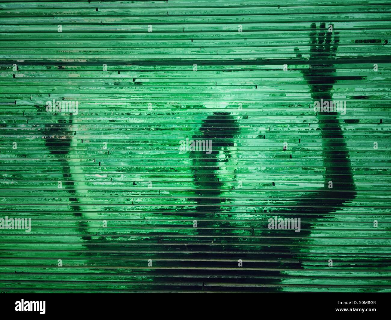 man raising hands behind the green glass wall - Stock Image
