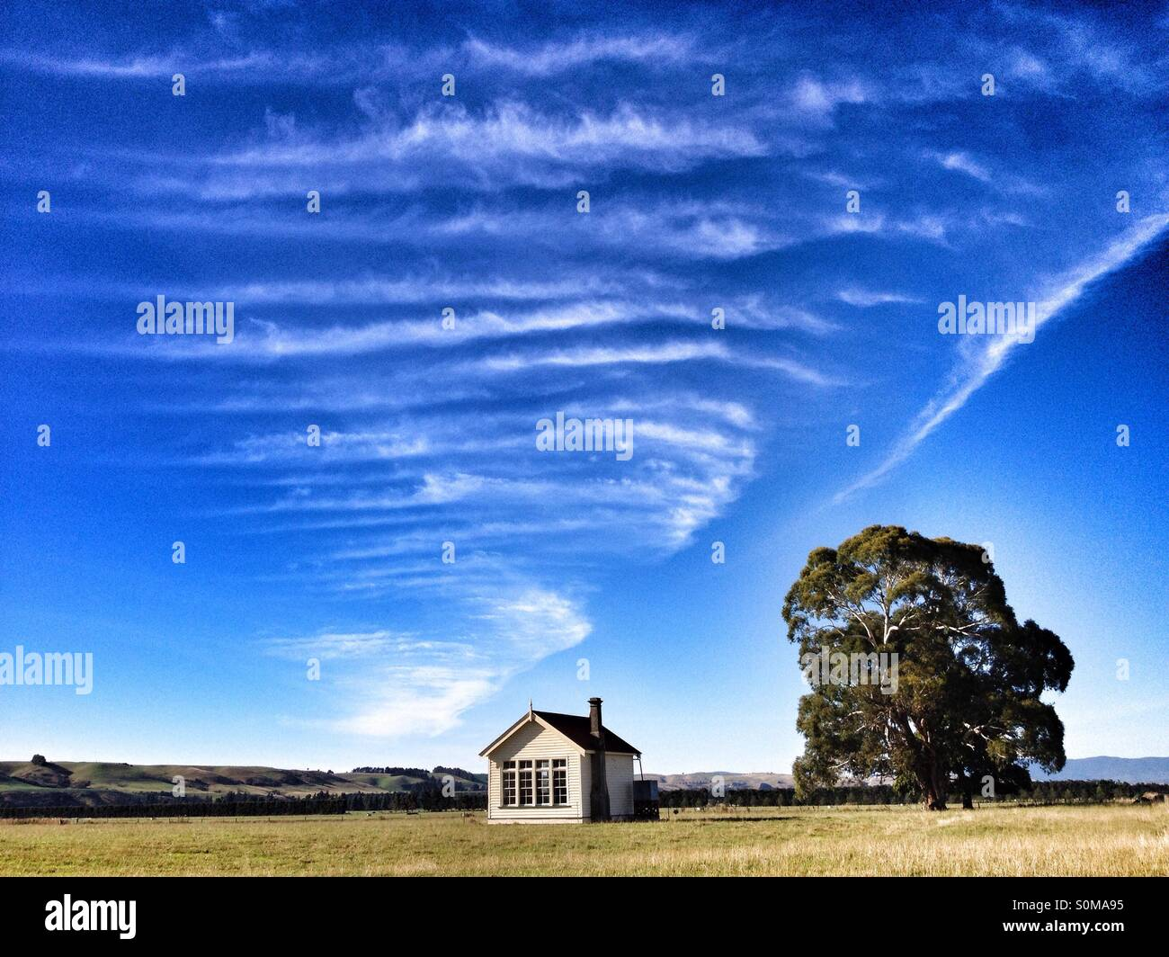 House and a tree, Otahu Flat, South Island of New Zealand Stock Photo