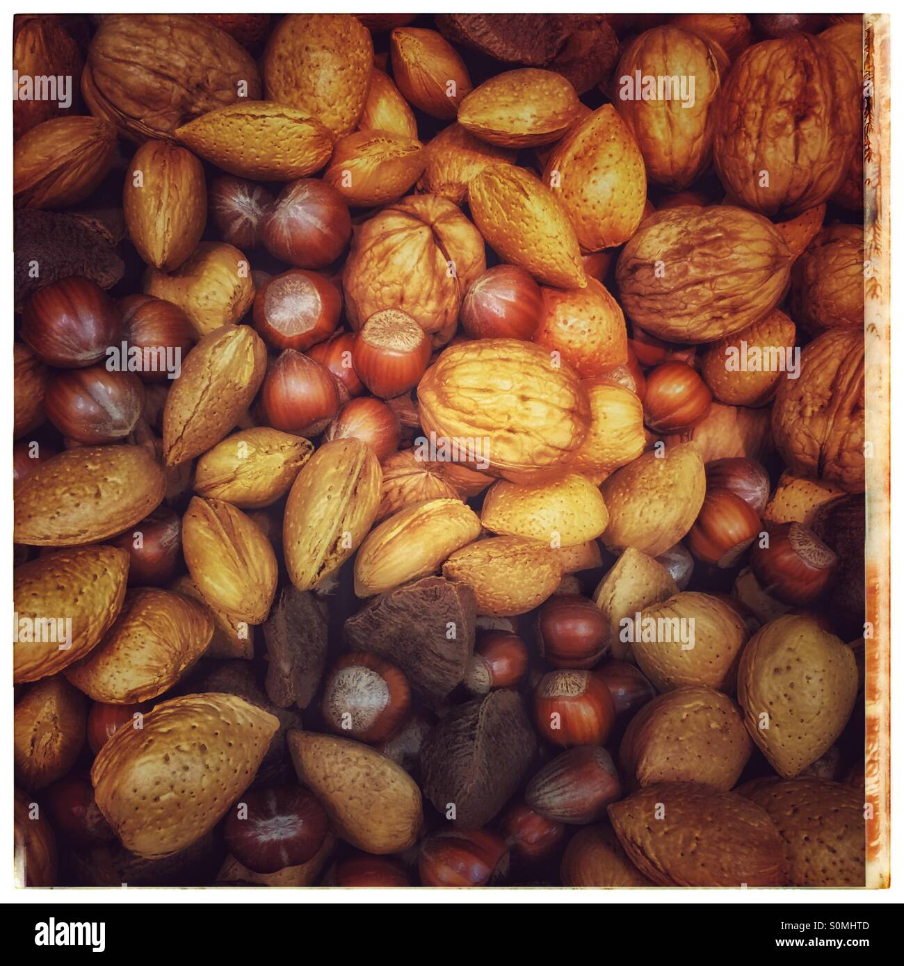 Mixed festive nuts - Stock Image