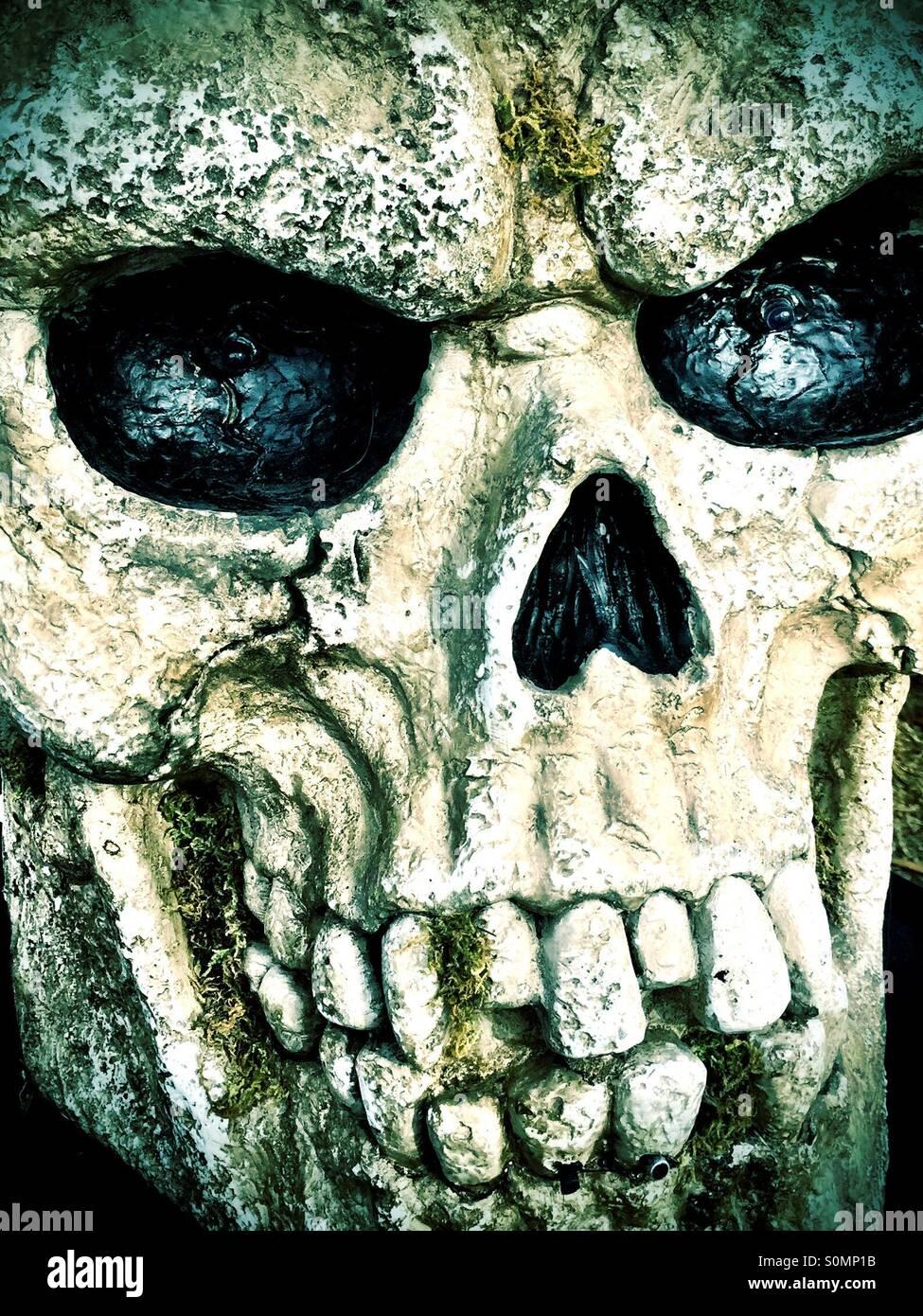 Ghoulish skull grimacing - Stock Image