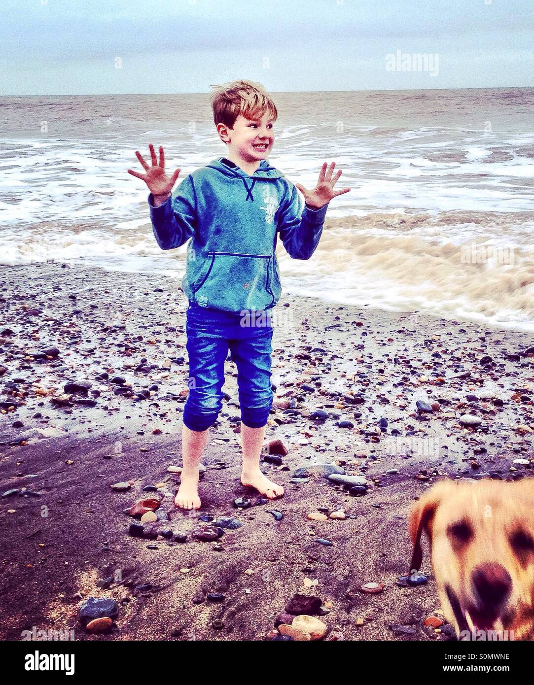 Boy on a beach being photobombed by dog. - Stock Image