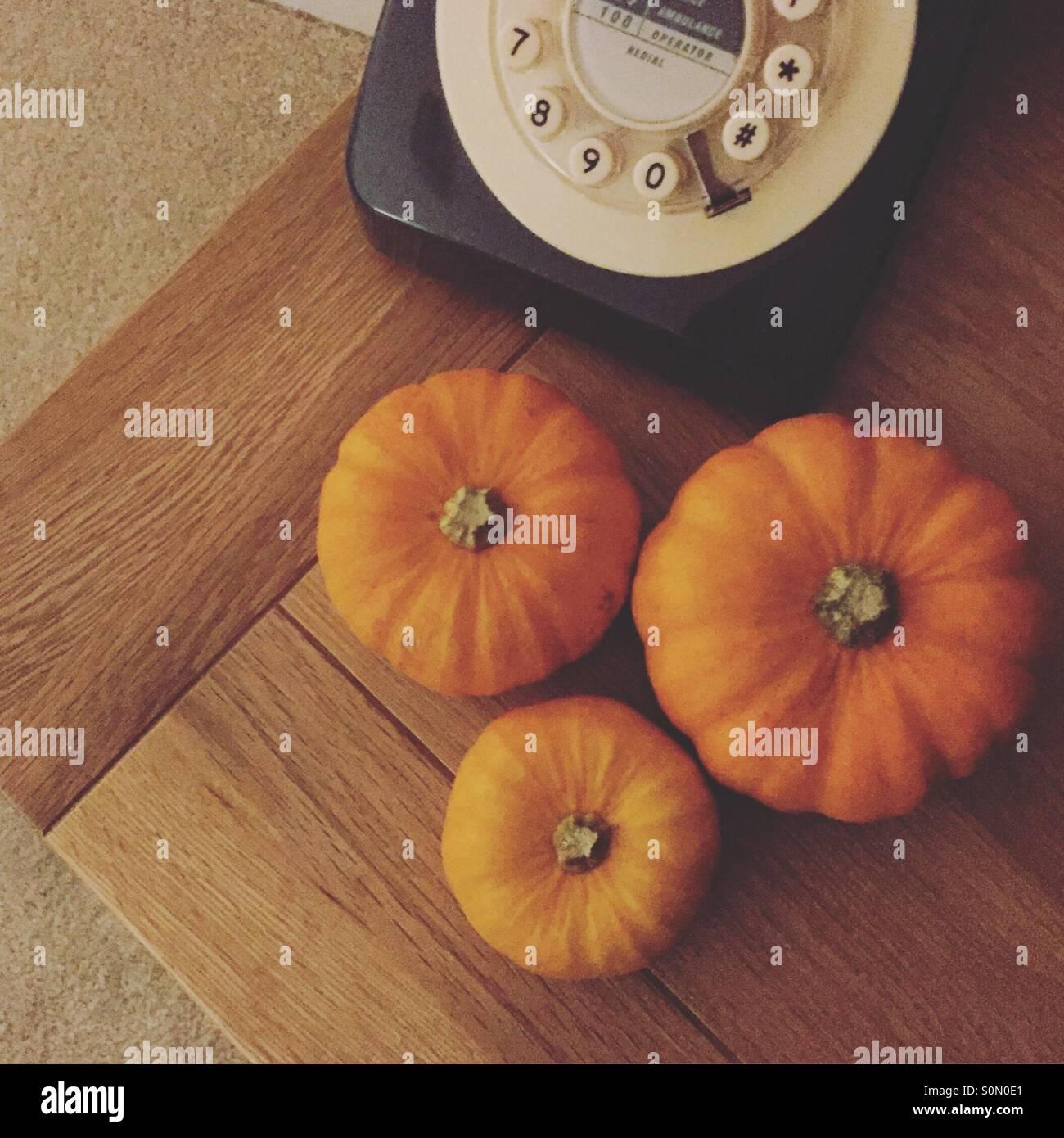 Three little pumpkins - Stock Image