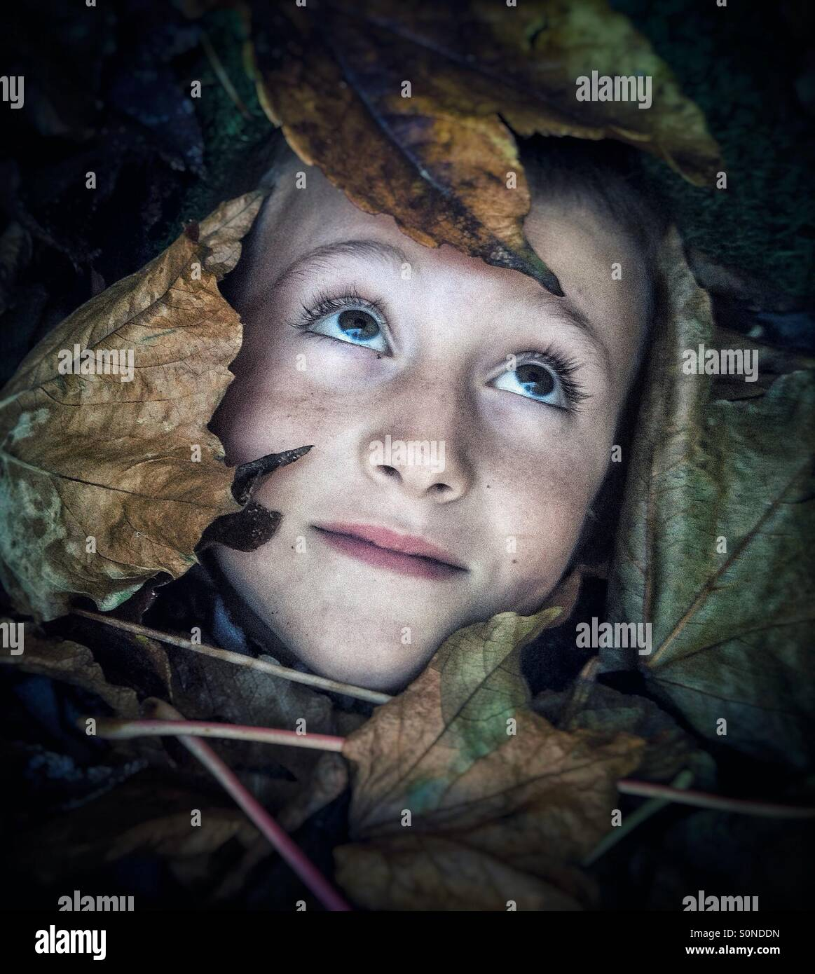 Boy covered with autumn leaves - Stock Image