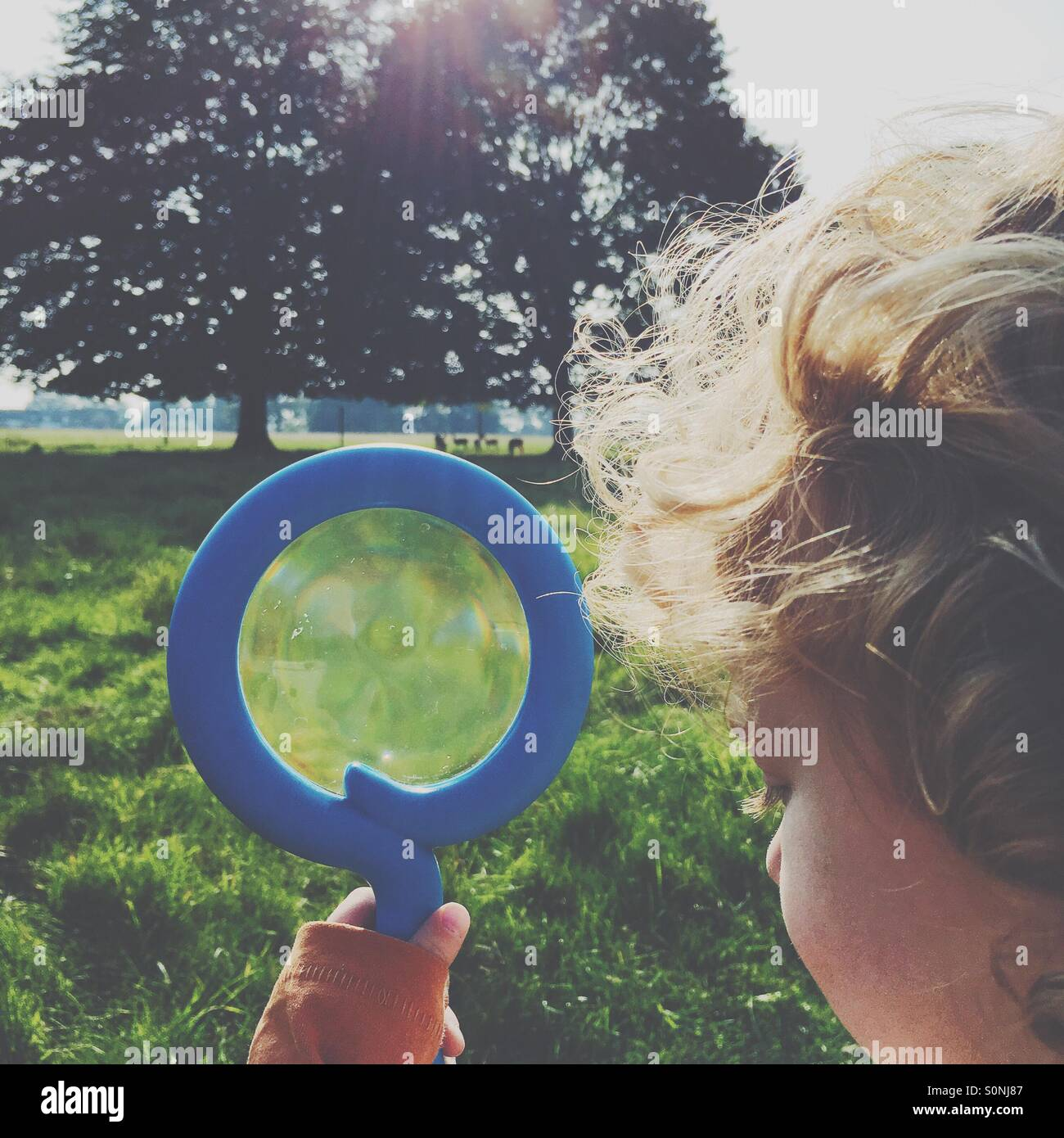 Boy looking for deer with a magnifying glass - Stock Image
