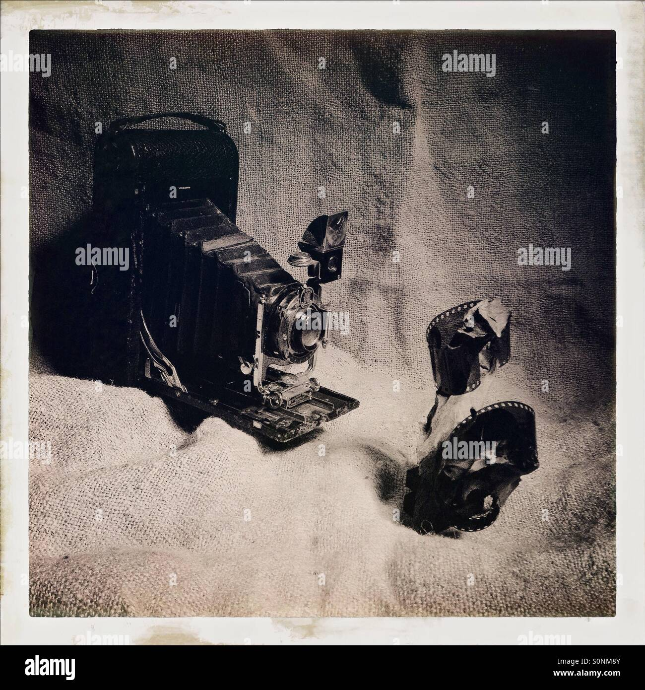 Vintage photography themed image , old style bellows folding camera - Stock Image