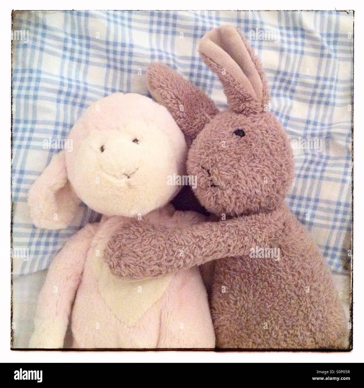 Lamb and Rabbit - Stock Image