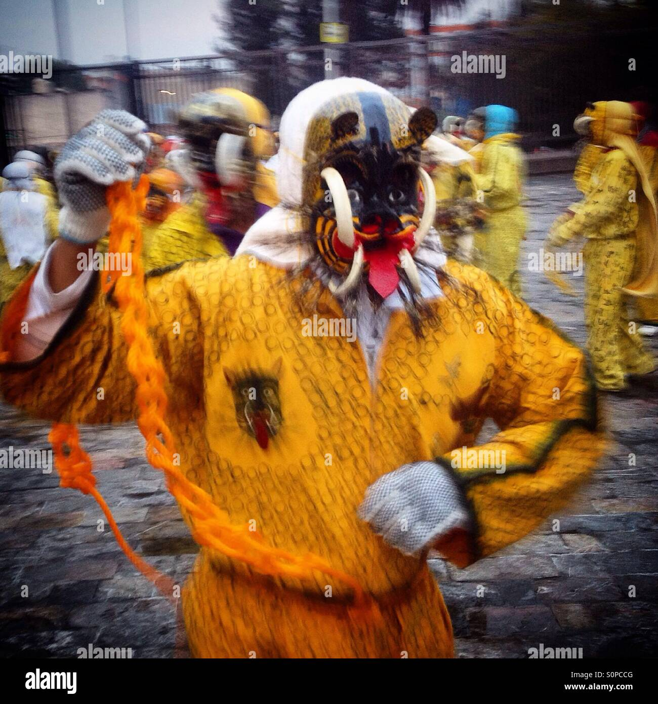 A dancer from Olinala, Guerrero, performs dressed as a jaguar during the pilgrimage of Our Lady of Guadalupe in - Stock Image