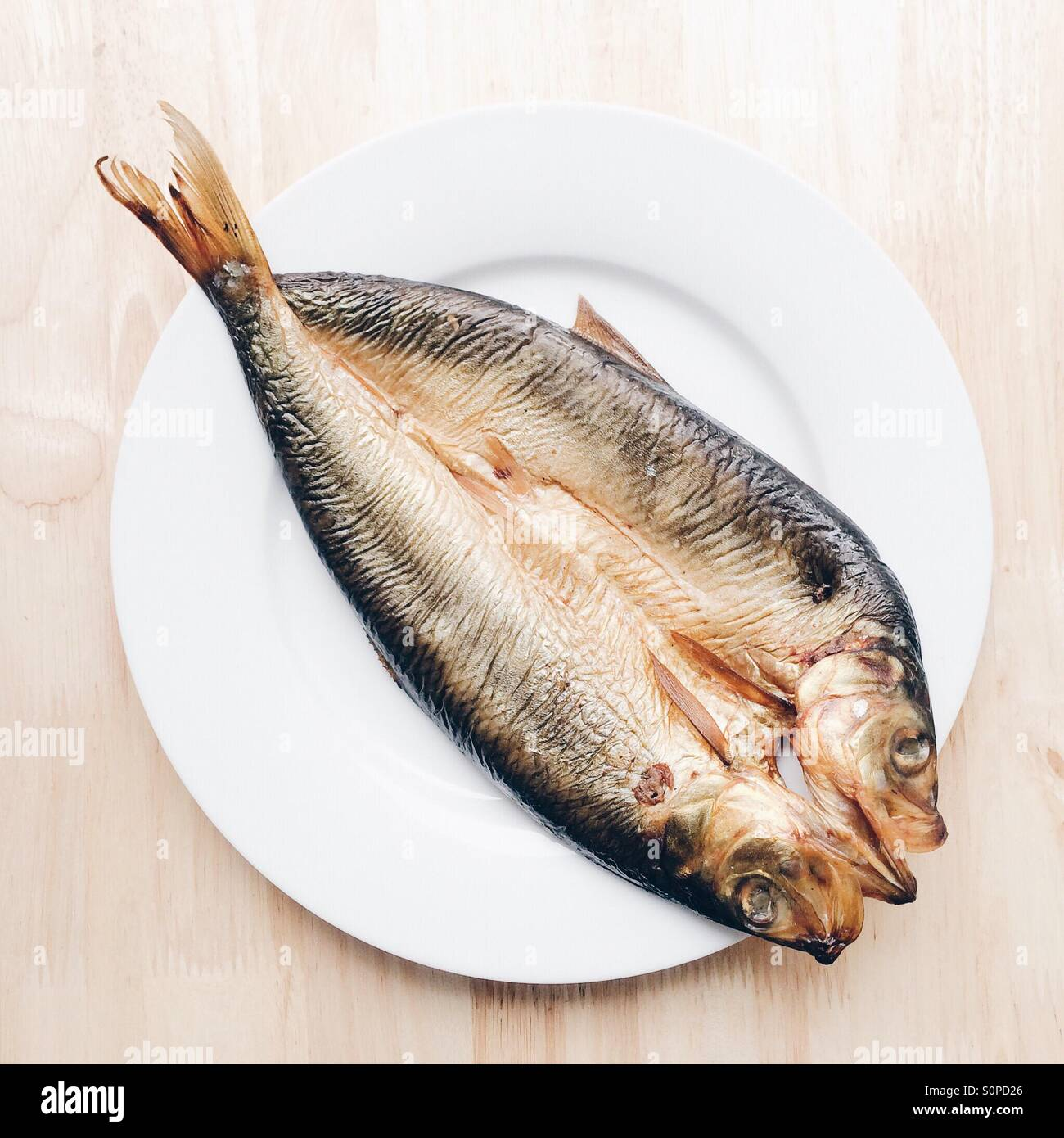 Uncooked raw Kipper on white plate - Stock Image