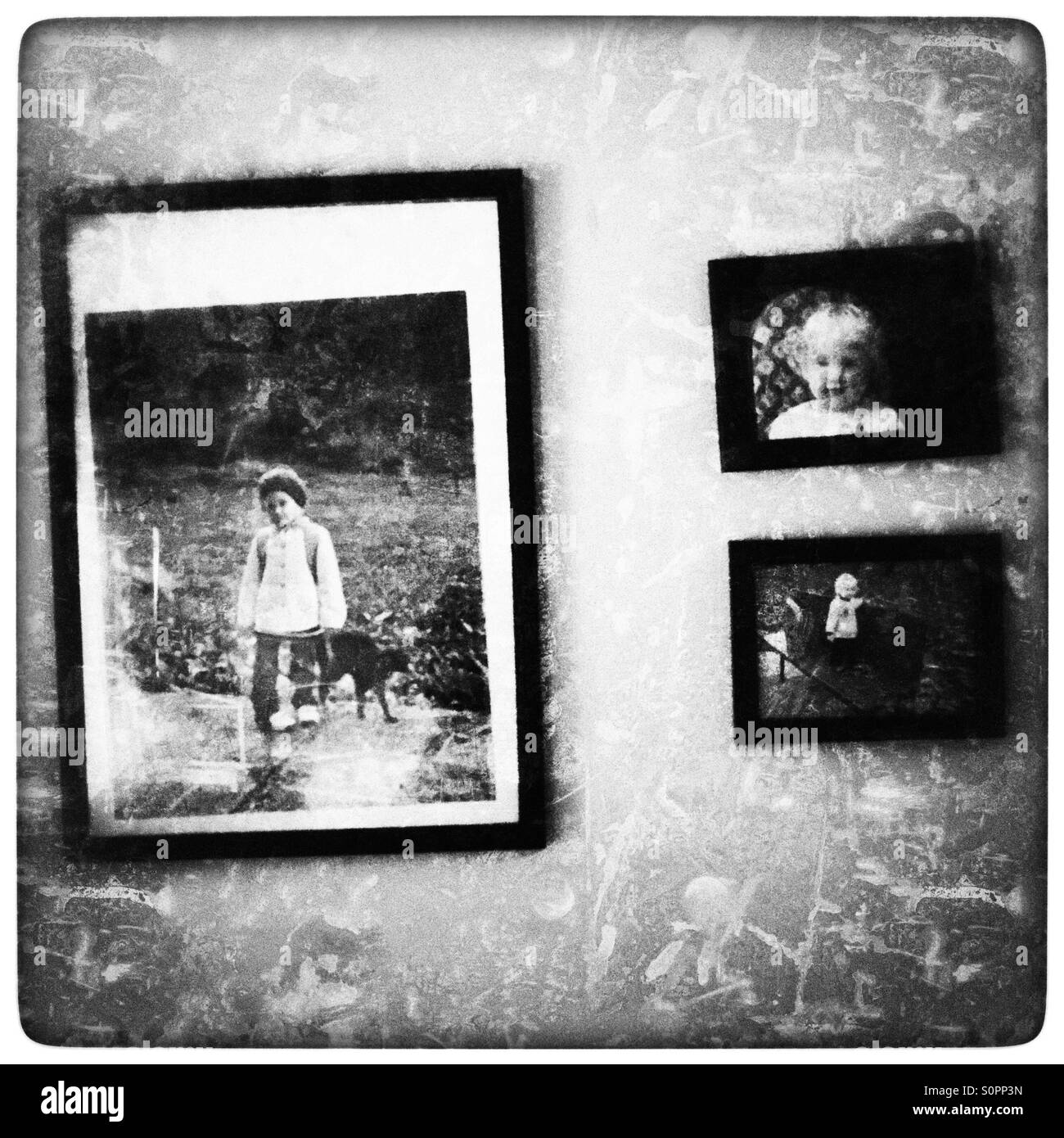 Photos on the wall - Stock Image