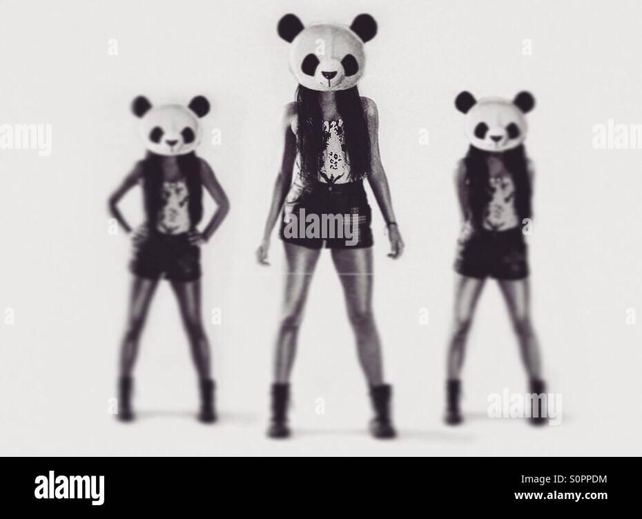 Panda head - Stock Image
