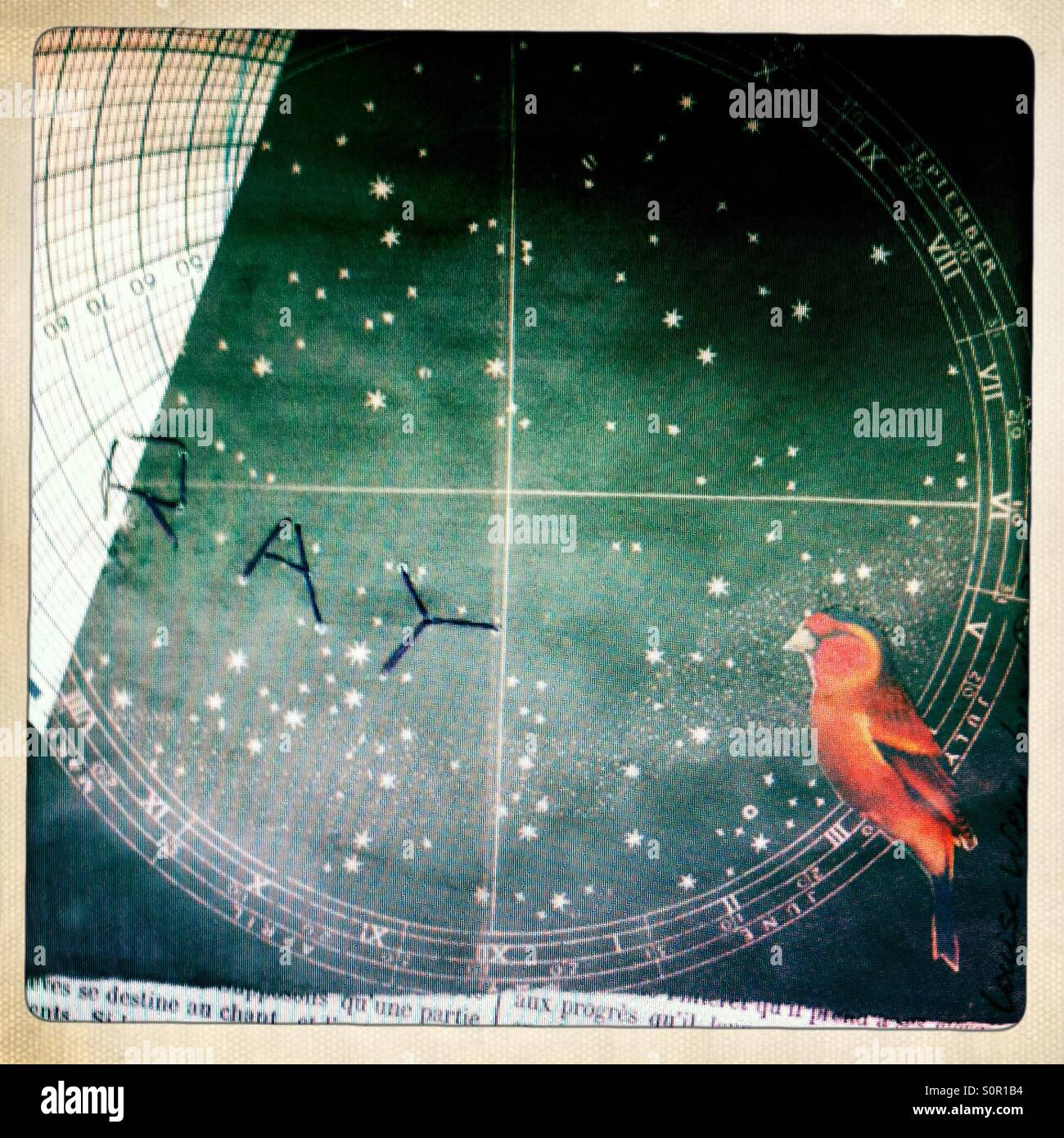 Star Chart for Ray - Stock Image