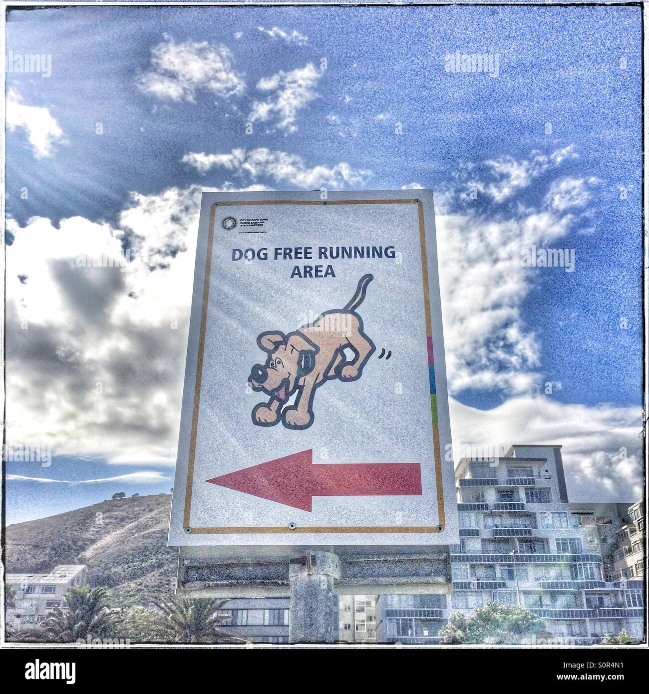 'Dog free running area' sign along the Seapoint Promenade, Cape Town. - Stock Image