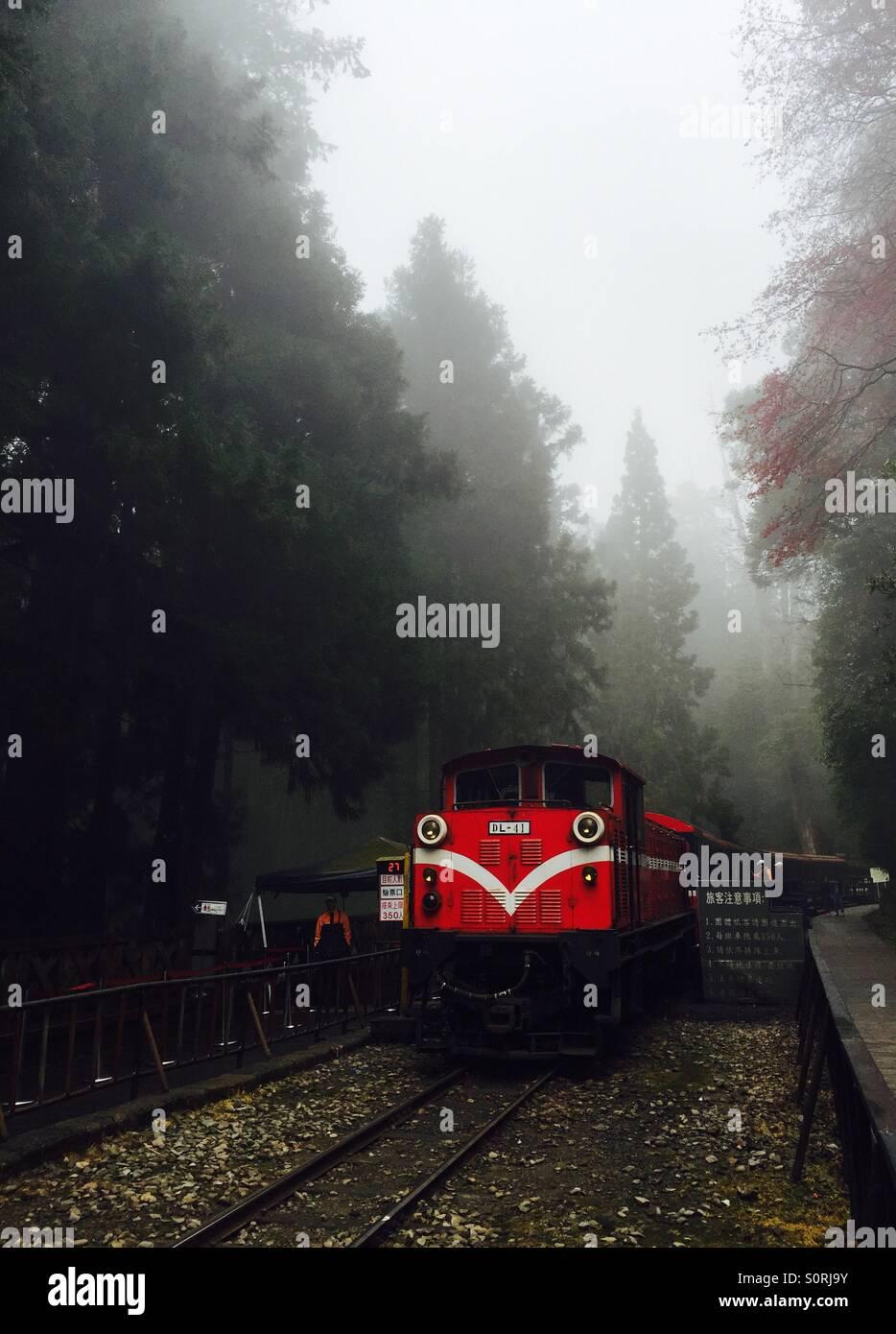 Old train running through the mist - Stock Image