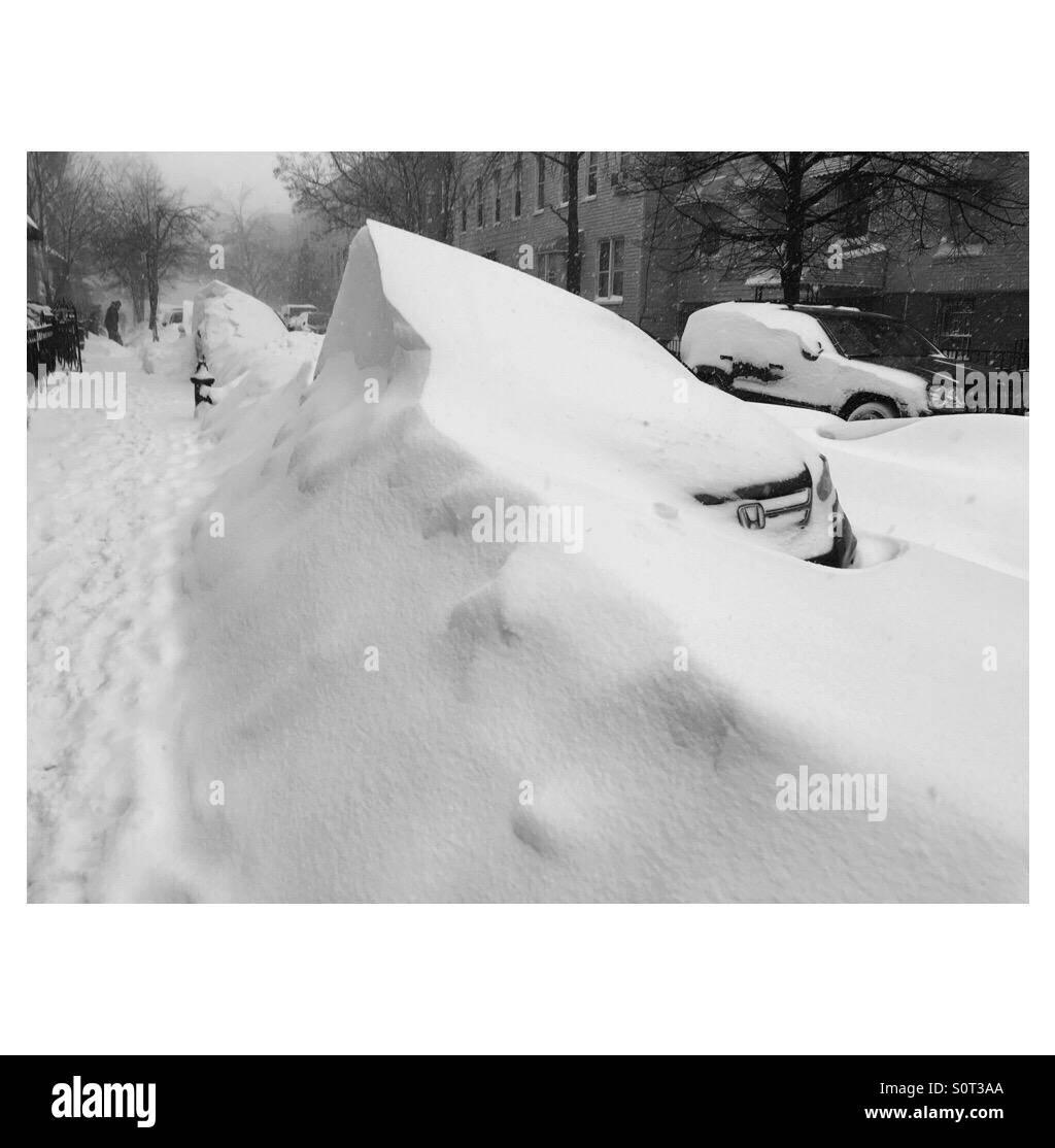 Jonas' aftermath in Greenpoint Brooklyn. - Stock Image