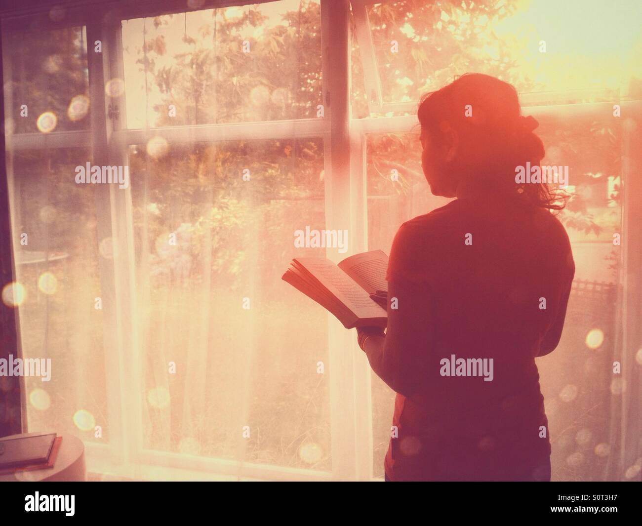Woman reading book by window - Stock Image
